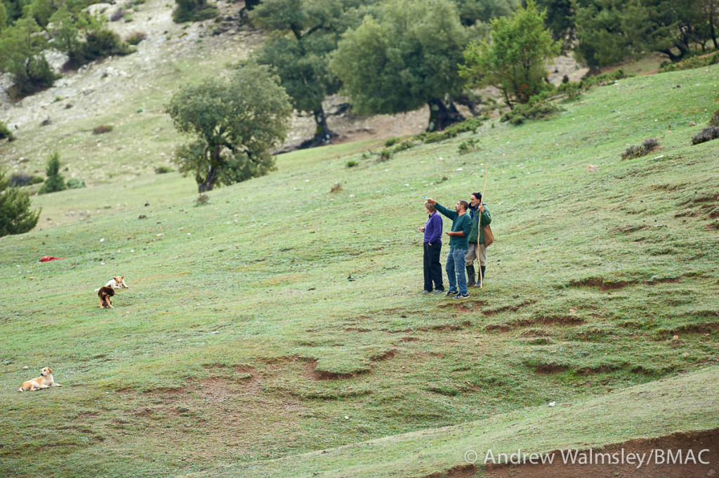 With help from a local shepherd, Sian and Ahmed work out the locations of macaque groups in Talassemtane National Park