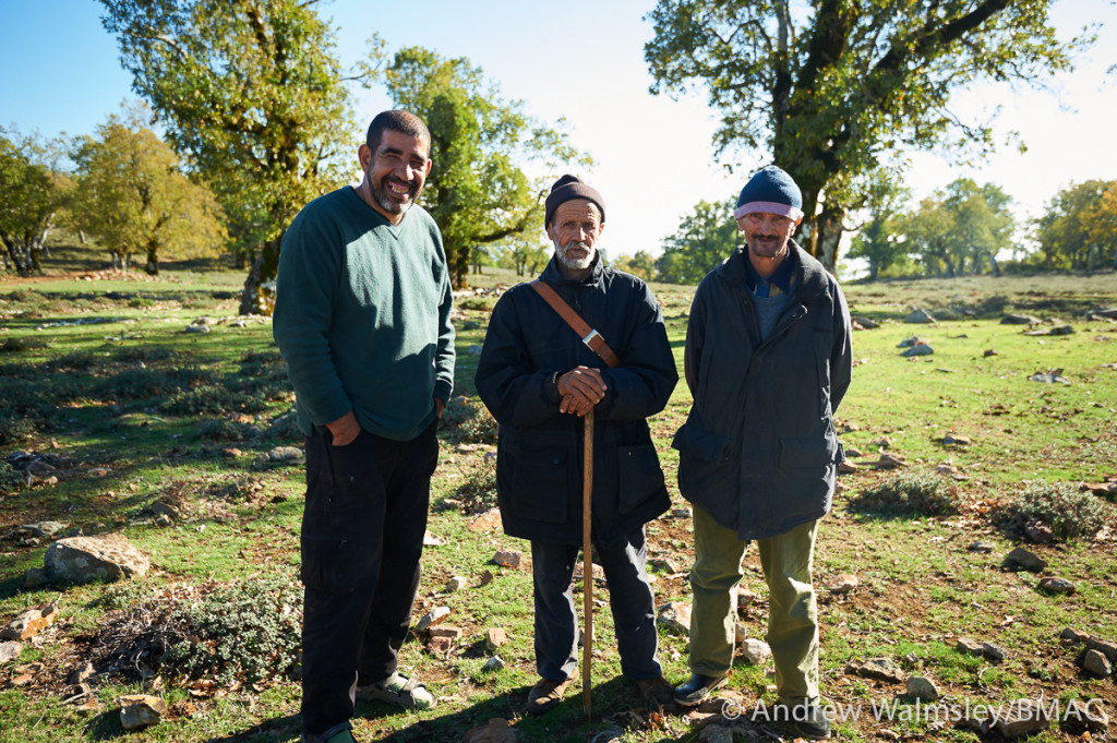 BMAC-Nov2014-AWalmsley-0413-web