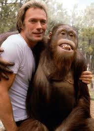 Clint Eastwood and 'Clyde'. Image from: http://www.theguardian.com/film/gallery/2010/mar/12/clint-eastwood